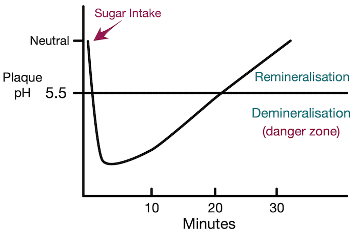 The Stephan Curve shows how the timeline of acid attacks, during which tooth decay can happen
