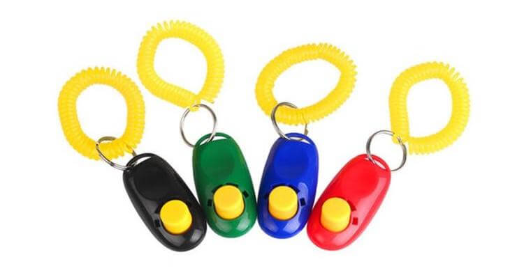 Dog clickers can be a great way of helping anxious patients, as an alternative stop signal.
