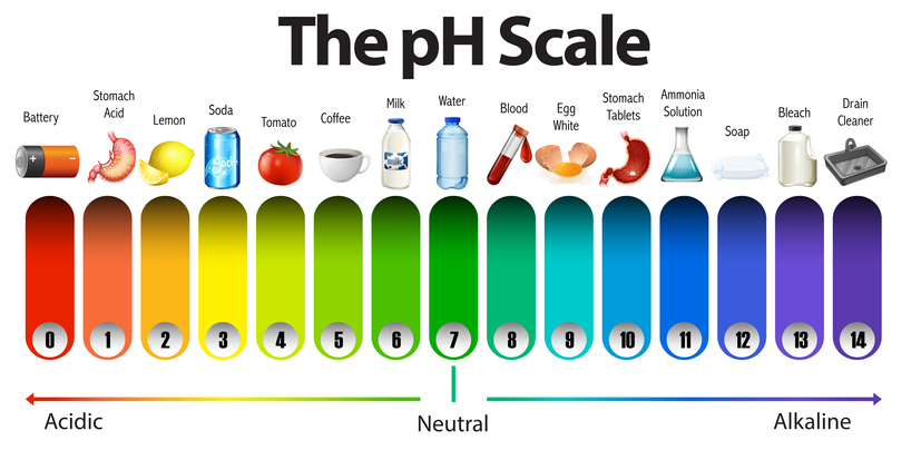 An illustration of acidic drinks and foods which can cause acid erosion on the pH scale. Citrus fruit, fizzy drinks, and most other fruits have a low pH and are acidic.